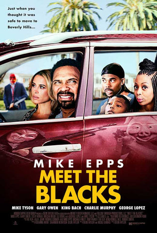 Meet the Blacks 27 x 40 Movie Poster - Style A