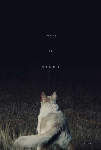 It Comes at Night 27 x 40 Movie Poster - Style B