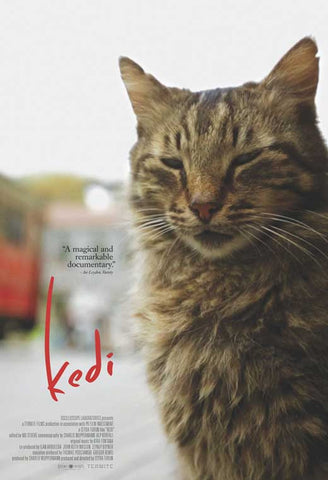 Kedi 27 x 40 Movie Poster - Style A