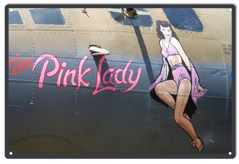 Timeless Nose Art Pink Lady Sign