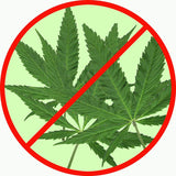 Marijuana Cannabis Sign 14Round