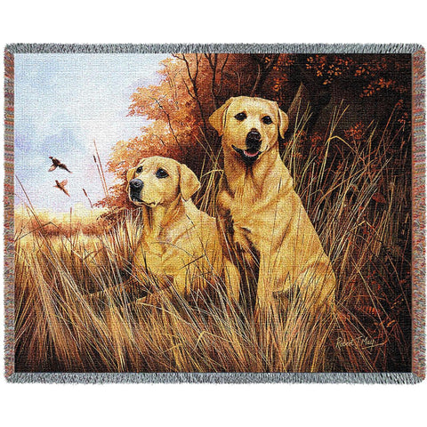 Labrador Retrievers Yellow Blanket