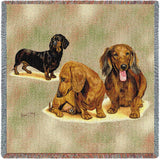 Dachshund Puppies Small Blanket