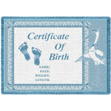 Birth Certificate Blue Small Blanket