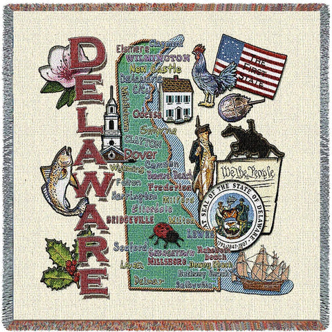 Delaware State Small Blanket