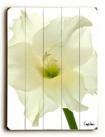 White Gladiolus Flower Wood Sign 14x20 (36cm x 51cm) Planked