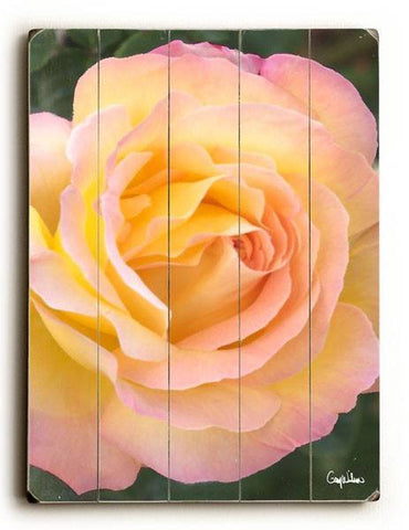 Golden Rose Wood Sign 12x16 Planked
