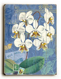 White Orchid Wood Sign 14x20 (36cm x 51cm) Planked