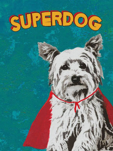 Superdog Wood Sign 12x16 Planked