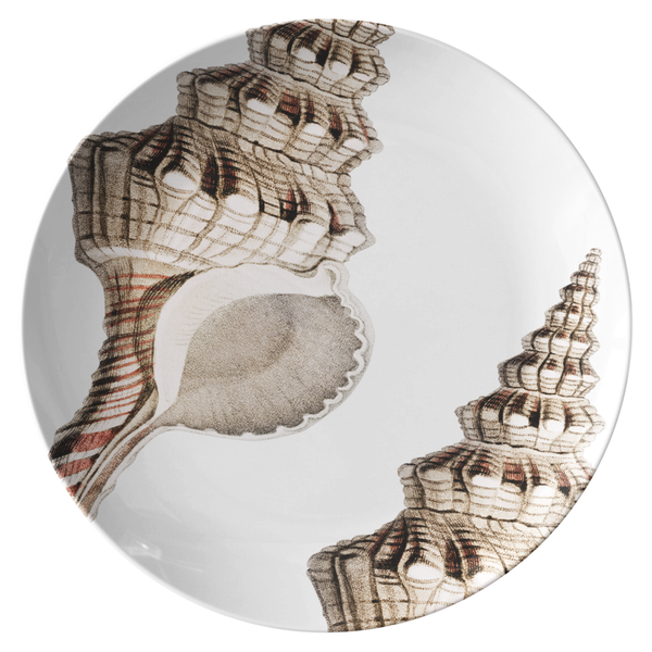 "Seashell Dinnerware, Conch Shell 10"" Plate, ThermoSāf® Polymer Resin"