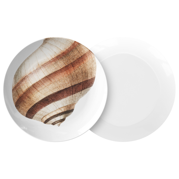 "Seashell Dinnerware, Striped Mollusk 10"" Plate, ThermoSāf® Polymer, Brown & White"
