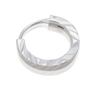 Rylee Simply Pretty Nose Ring, Hinged Hoop Style, Perfect Gift for Women and Men