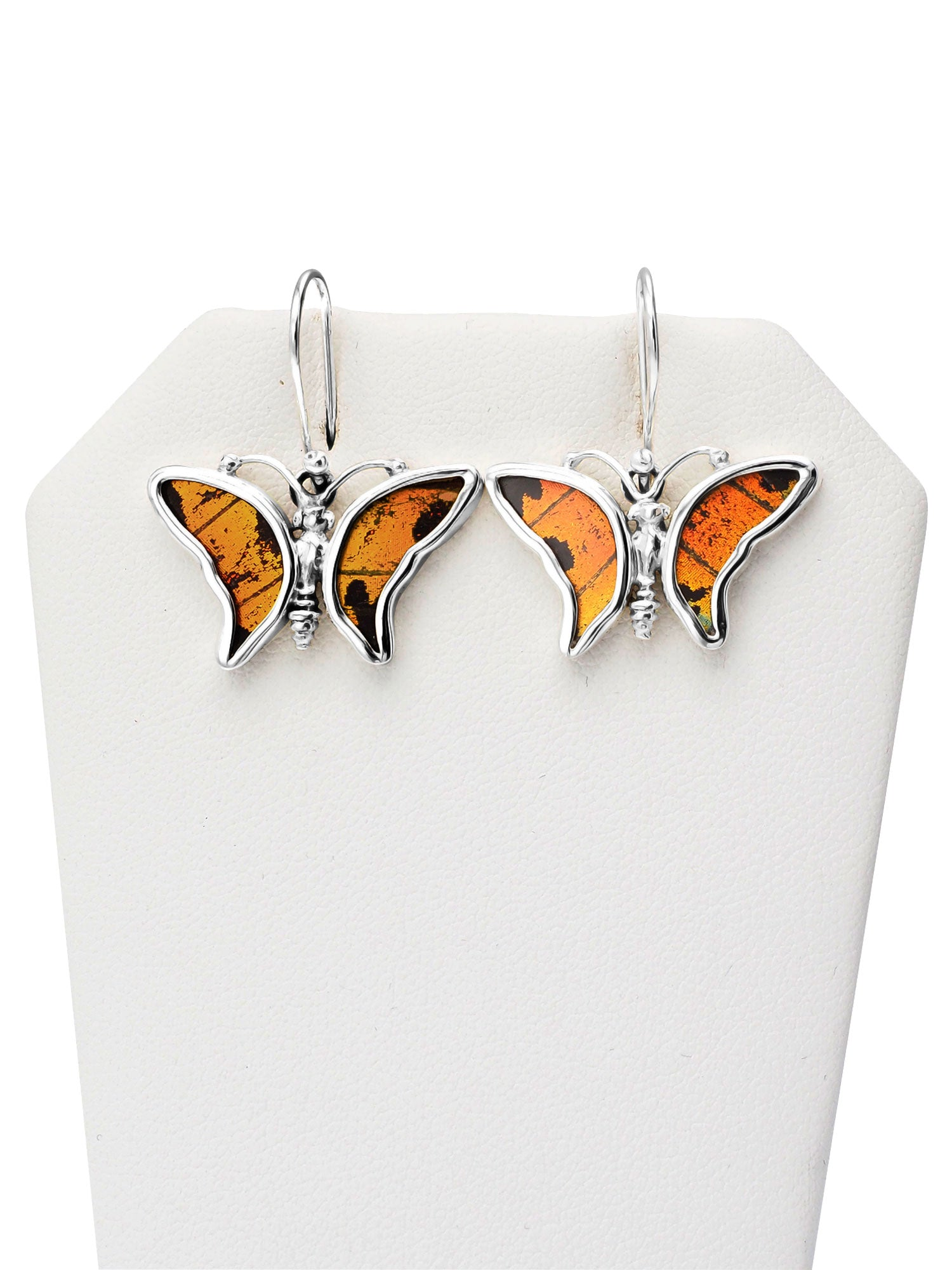 Charrie Butterfly Earrings, Inspirational Jewelry for Women - Quan Jewelry