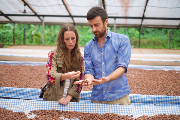 Katie is examining cacao as it dries on a raised bed