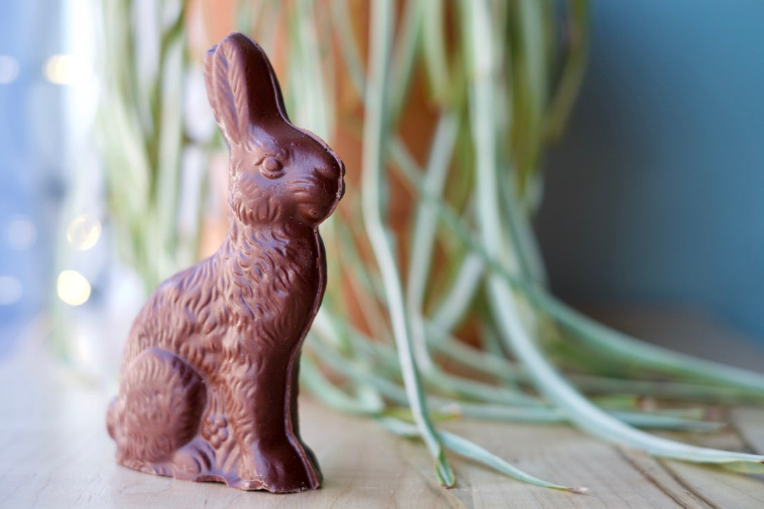 Our chocolate easter rabbit is solid chocolate. It is shown here standing up outside of its packaging.