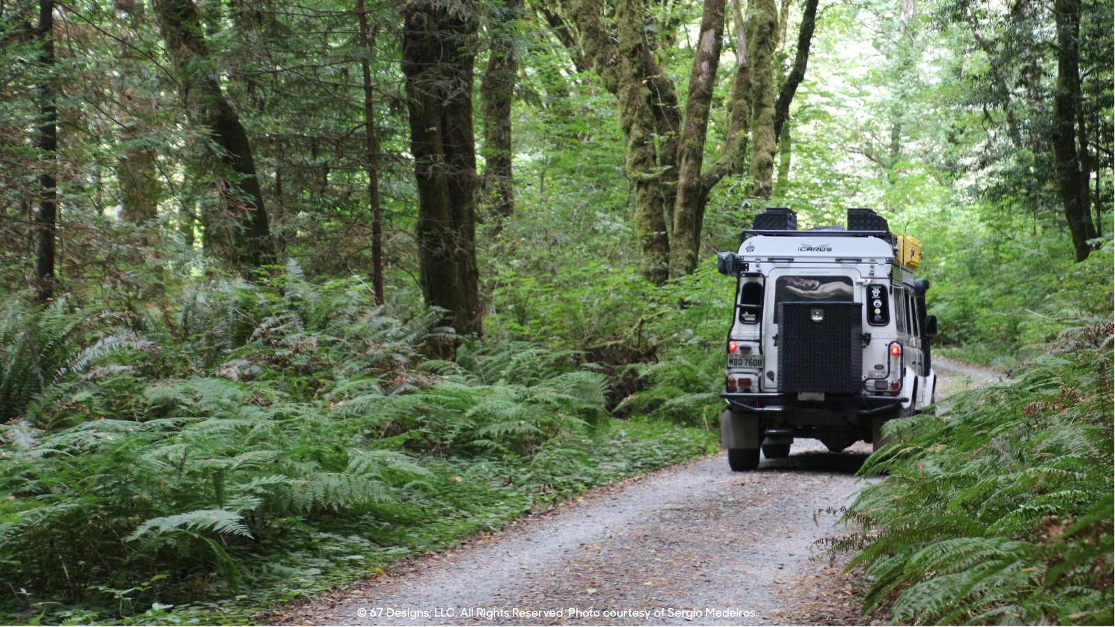 Sergio's Land Rover in forest