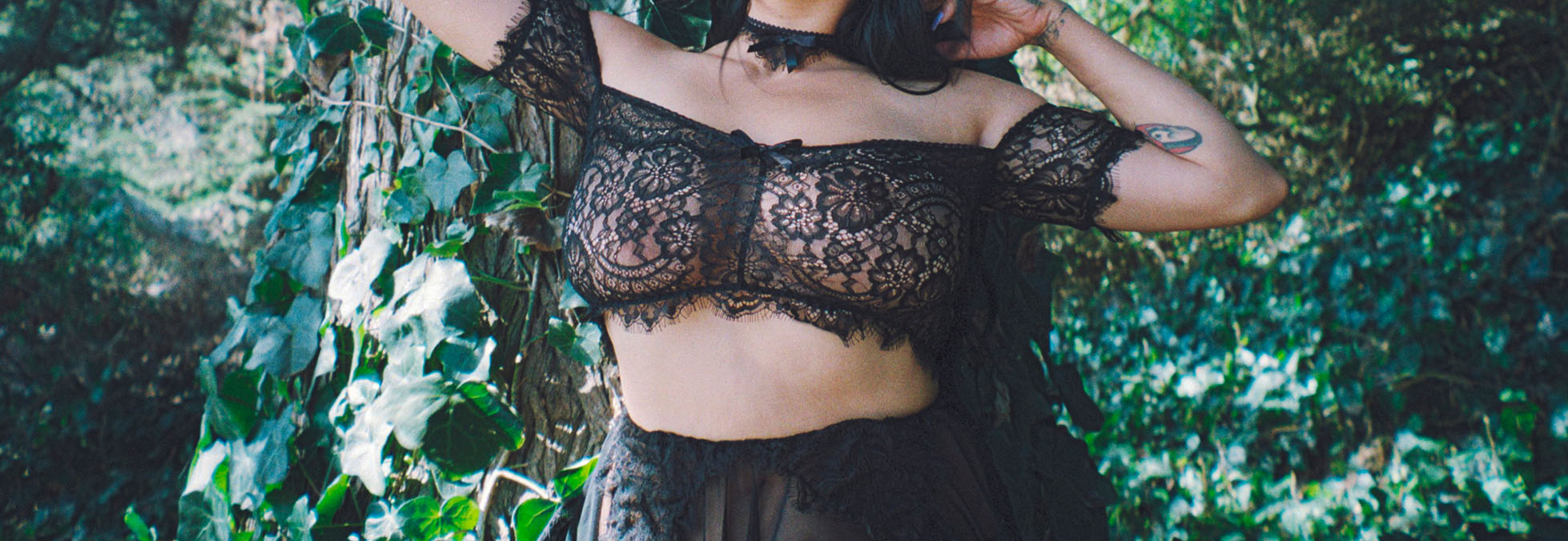 Alexandrea Anissa Lace Collection Banner
