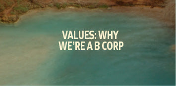 why we're a b corp