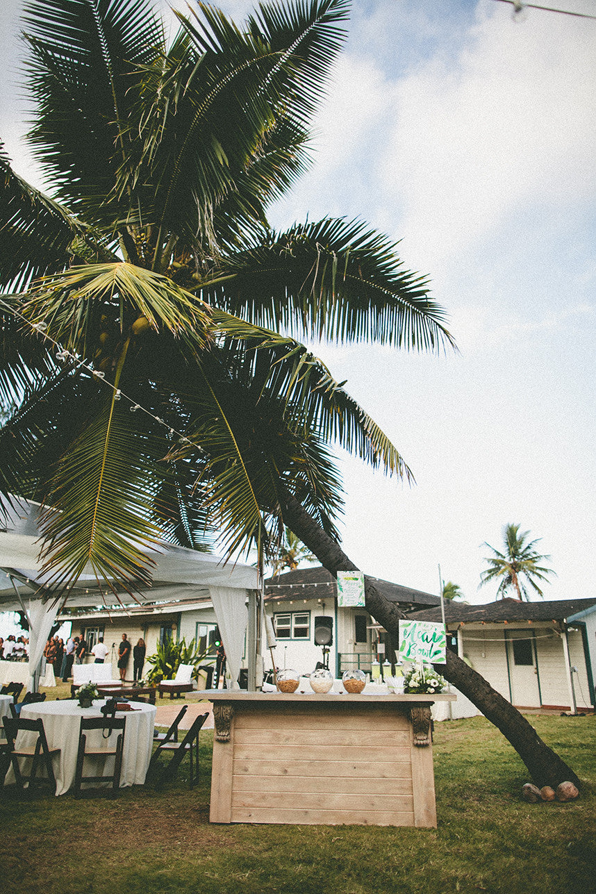 Hawaii Palm Tree Destination Island Wedding