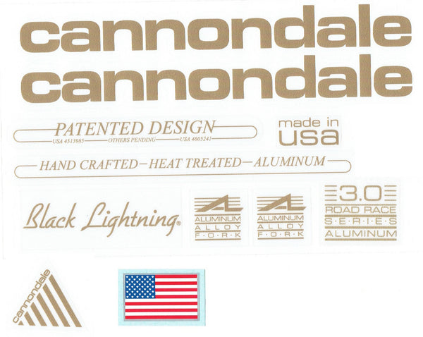 1989 - 1990 Cannondale Black Lightning Decal