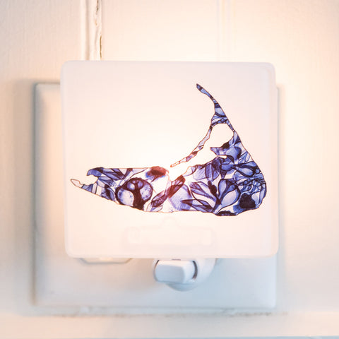 X-Ray Nantucket Night Light