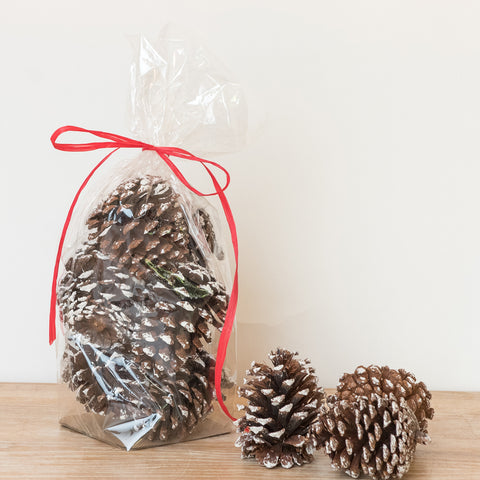 Frosted Pine Cones