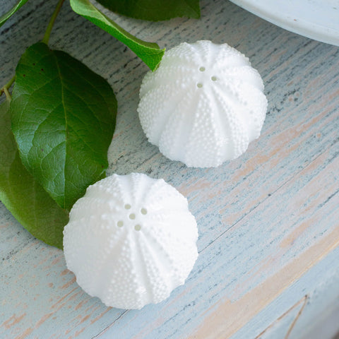 Sea Urchin Salt & Pepper Shaker