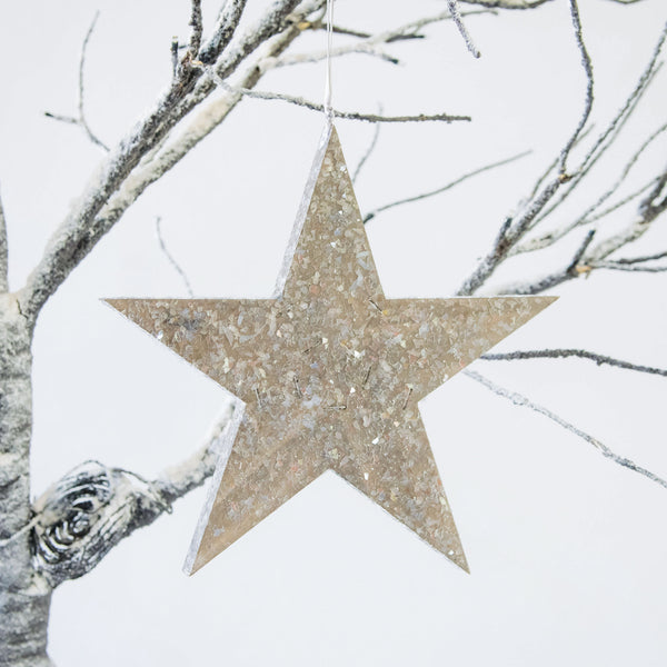 Rustic Star Ornament