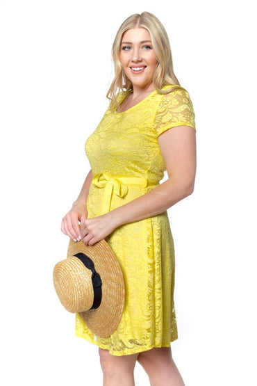 Yellow Ania Plus Dress