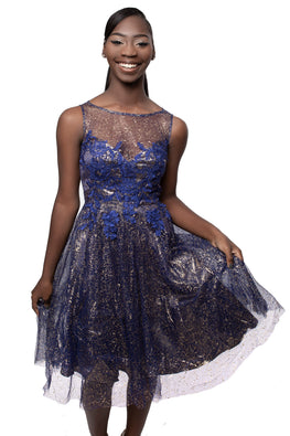 Navy Everlee Sparkle Dress