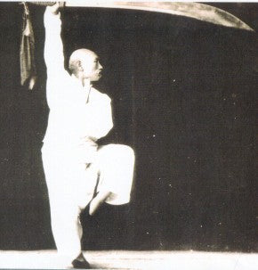 Exploring the Traditional Japanese Martial Art Baguazhang