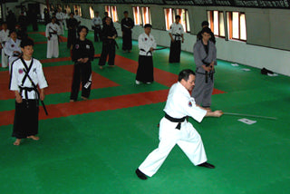 Exploring the Korean Martial Art Hankumdo
