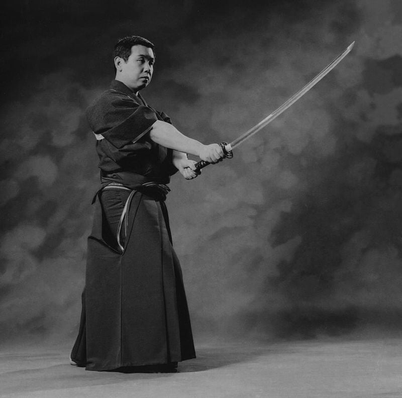What Is the Ryushin Shouchi Ryu School of Martial Arts?