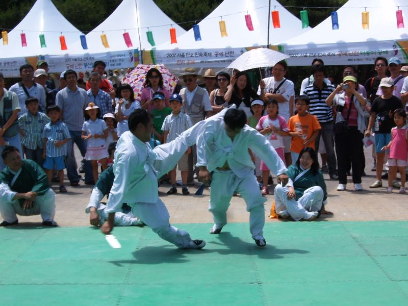 History of Korean Taekkyeon