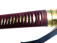 Red Kuksool sword - high quality sword from Martialartswords.com