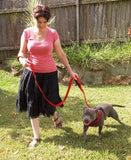 Double Handle Dog Leash - 6FT - Walk, Train and Protect your Pet in Traffic