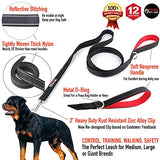 Dog Leash - Extra Heavy Duty - Thick 3mm Nylon - 6ft Long - Black