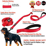 Dog Leash - Extra Heavy Duty - Thick 3mm Nylon - 6ft Long - Red