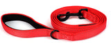 Dog Leash - Extra Heavy Duty - Thick 3mm Nylon - 6ft Long