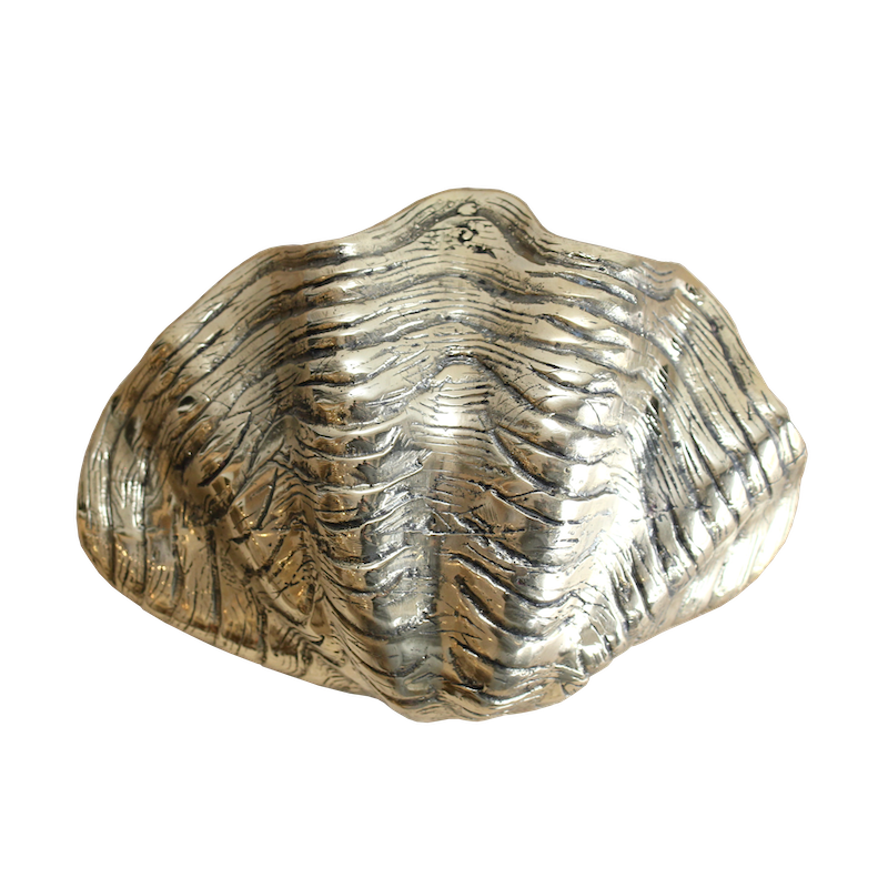 Brass Clam Shell Bowl