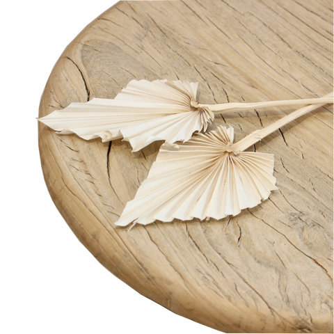 Dried Palm Spear - White