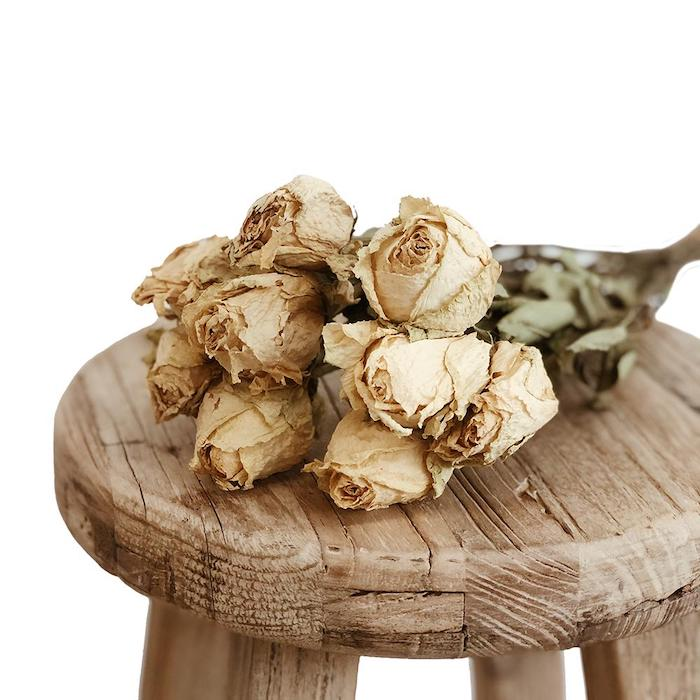 Dried Roses - Cream