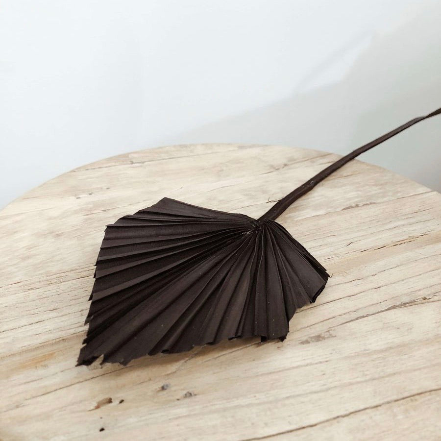 Dried Palm Spear Small - Black
