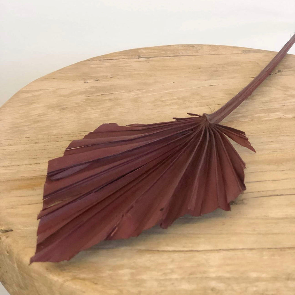 Dried Palm Spear Small - Burgundy