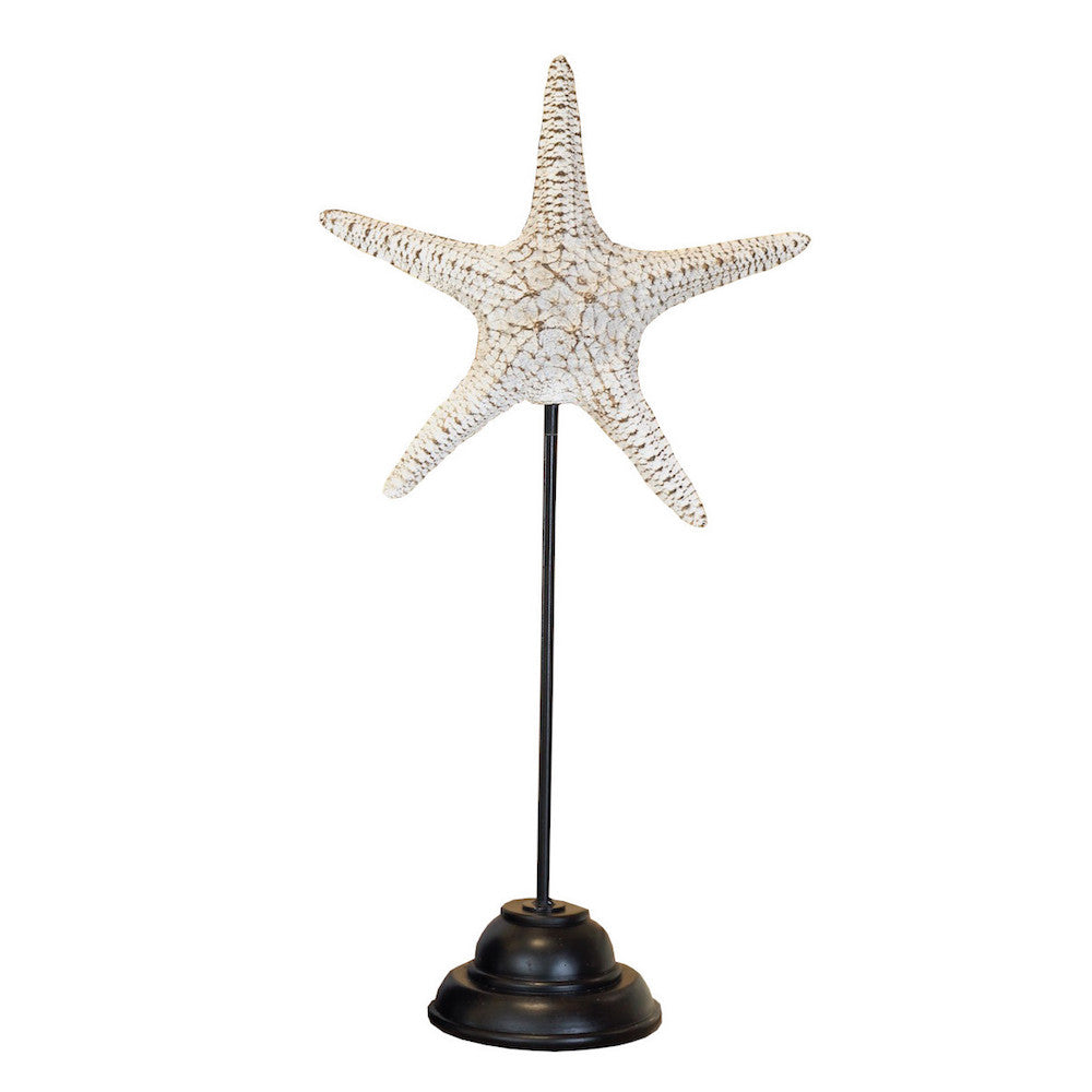 Decorative Starfish on Stand