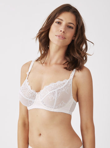Mimi Holliday Camelia Microfibre Maxi Bra in Oyster & White Lace