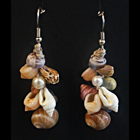 Shell Earrings - Combo Drop