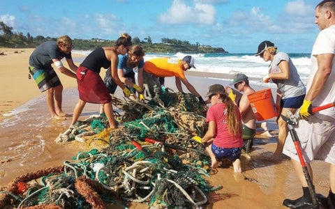 Hawaii beach cleanup