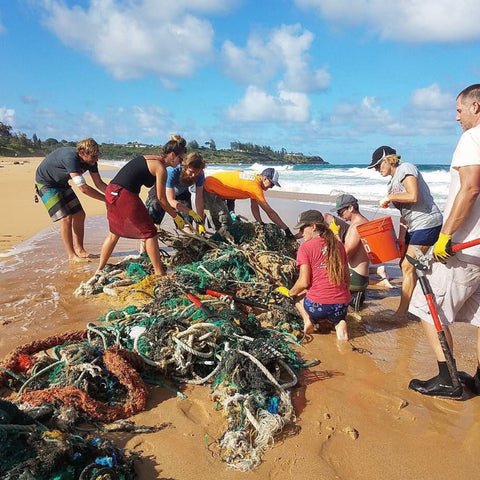 surfrider kauai cleanup hawaii