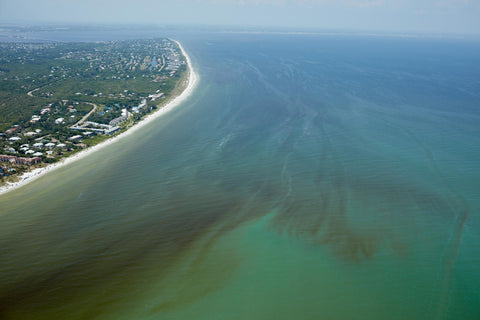 red tide nat geo